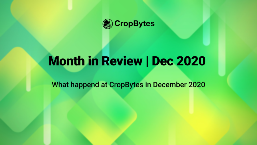 Month in Review | Dec 2020