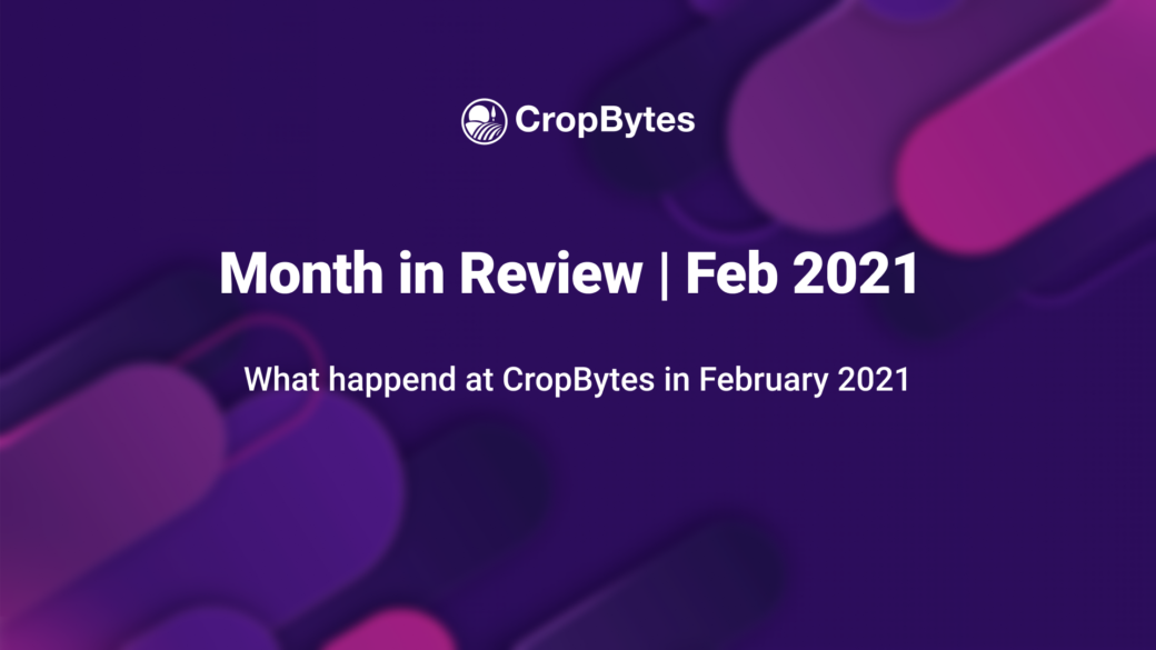 Month in Review | Feb 2021